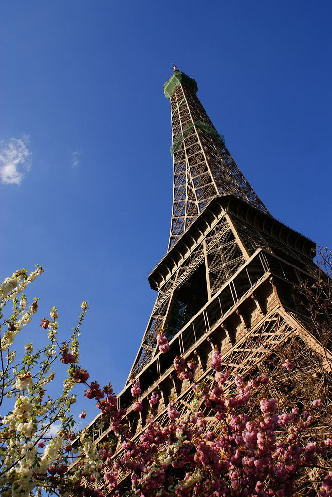Spring blossoms at the foot of the Eiffel Tower in Paris, France