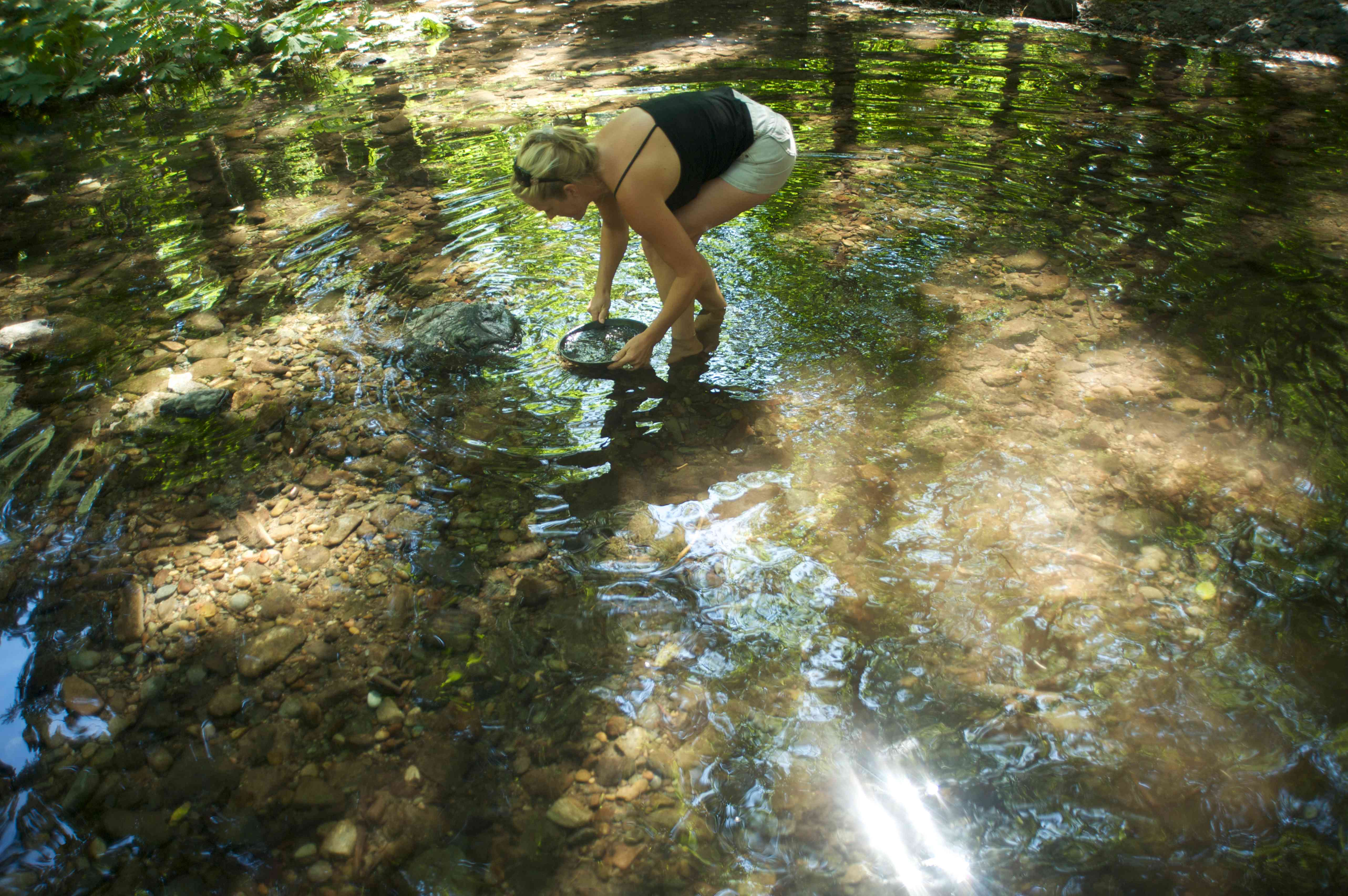 woman bending over in shallow water holding a pan