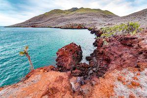 The Galapagos coastline.