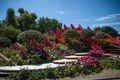 Gardens On Show At The 2017 RHS Chelsea Flower Show, London, England
