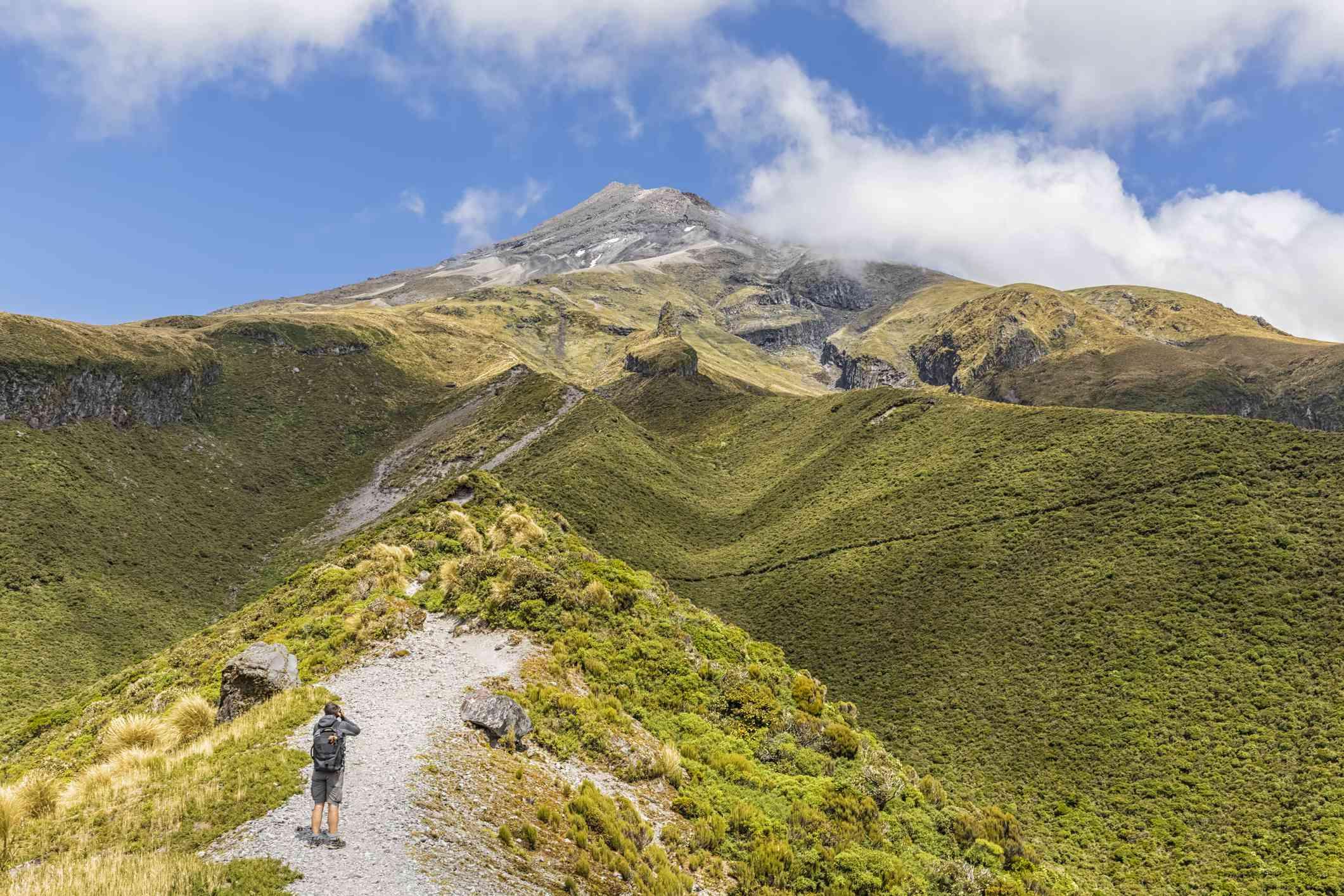 New Zealand, Male hiker admiring scenic view of Mount Taranaki volcano in spring