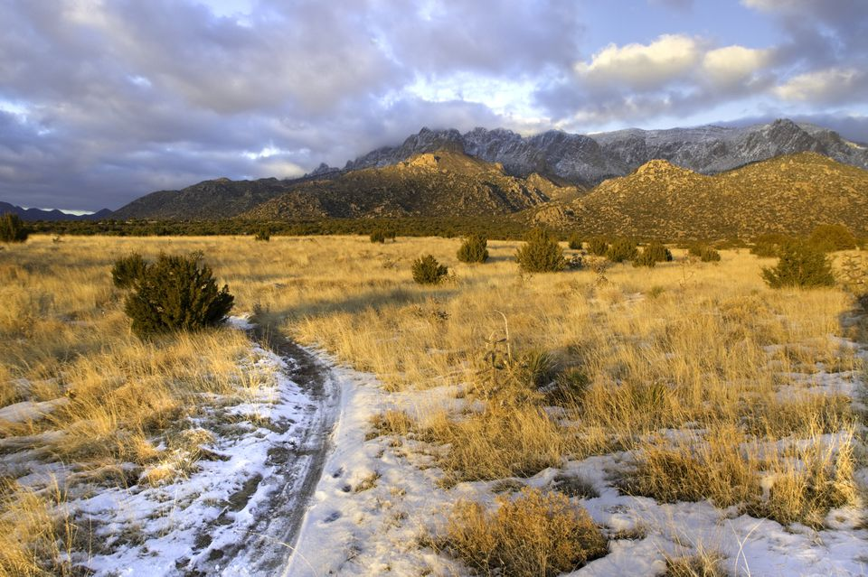 Snow in the sandia mountains of albuquerque, new mexico