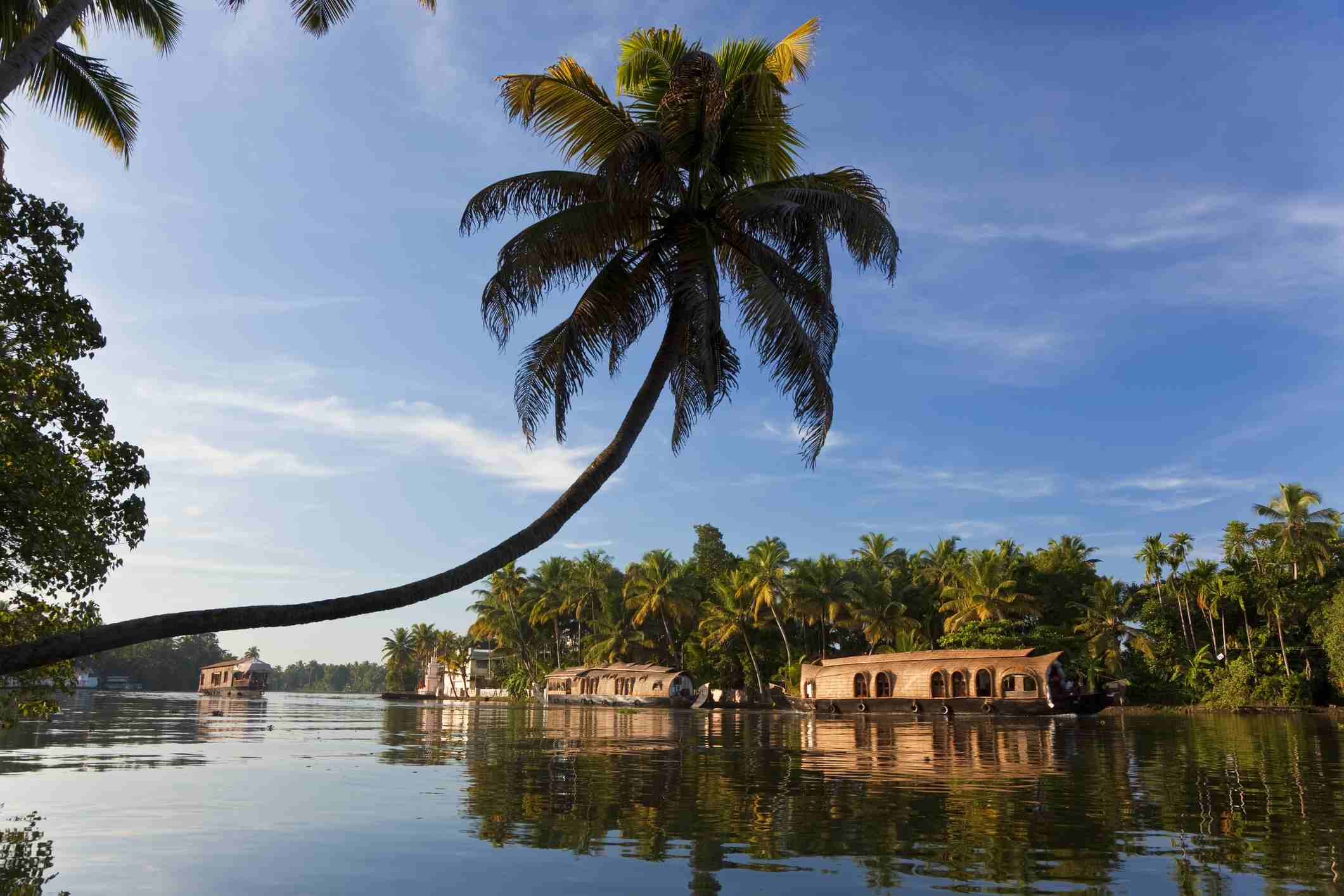 16 Top Tourist Places In Kerala That You Must Visit