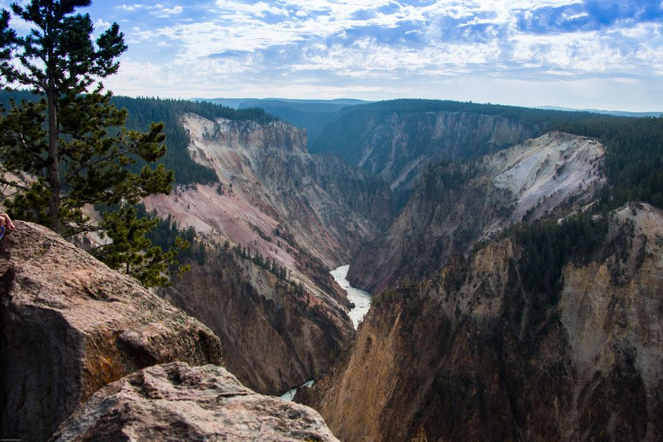 View of the Grand Canyon of Yellowstone with the Yellowstone river running through it