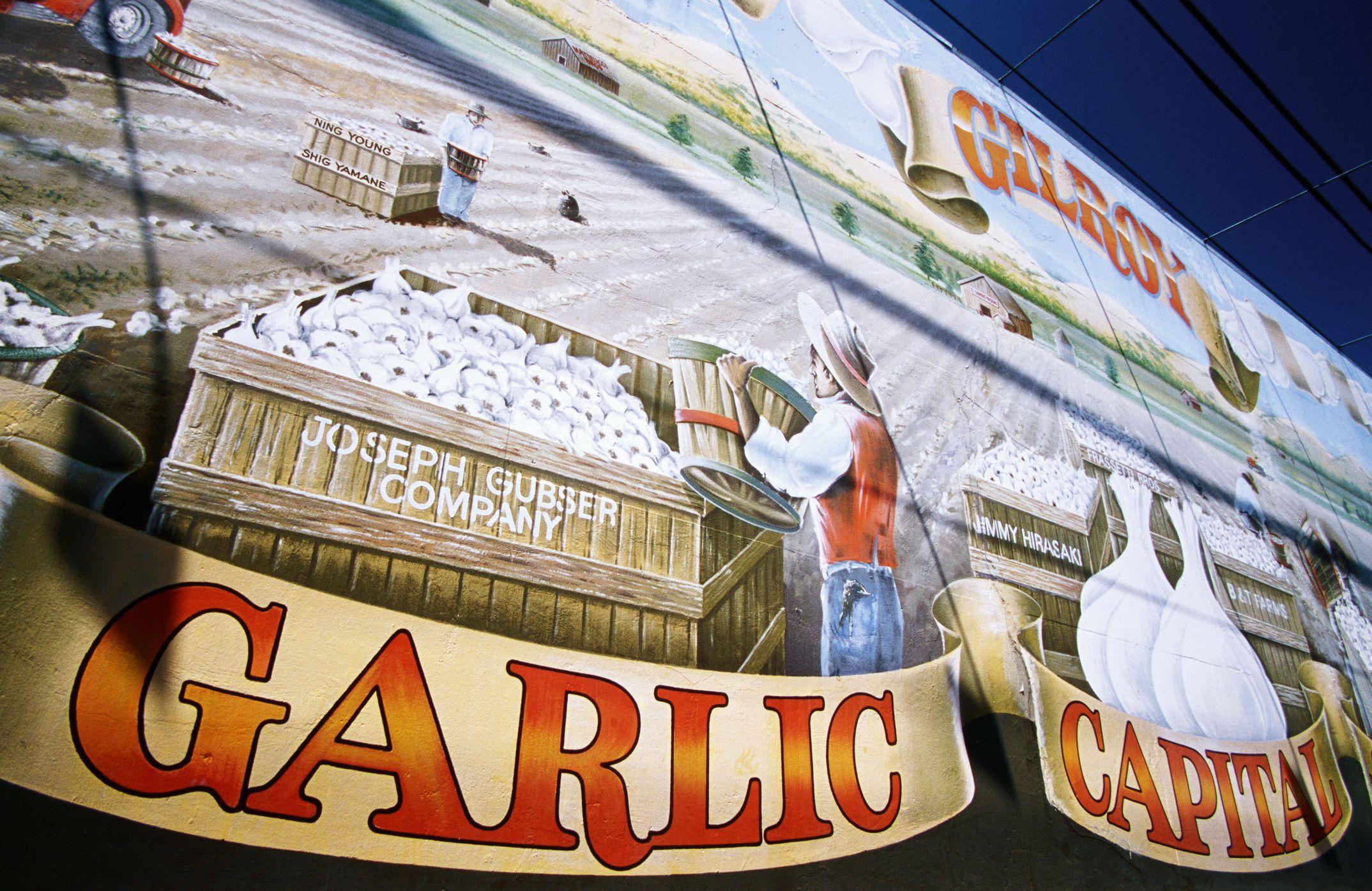 Gilroy Garlic Festival Tips
