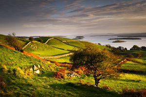 Irish countryside in autumn