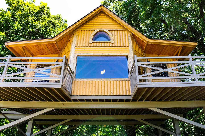 Bird's Nest Tree House