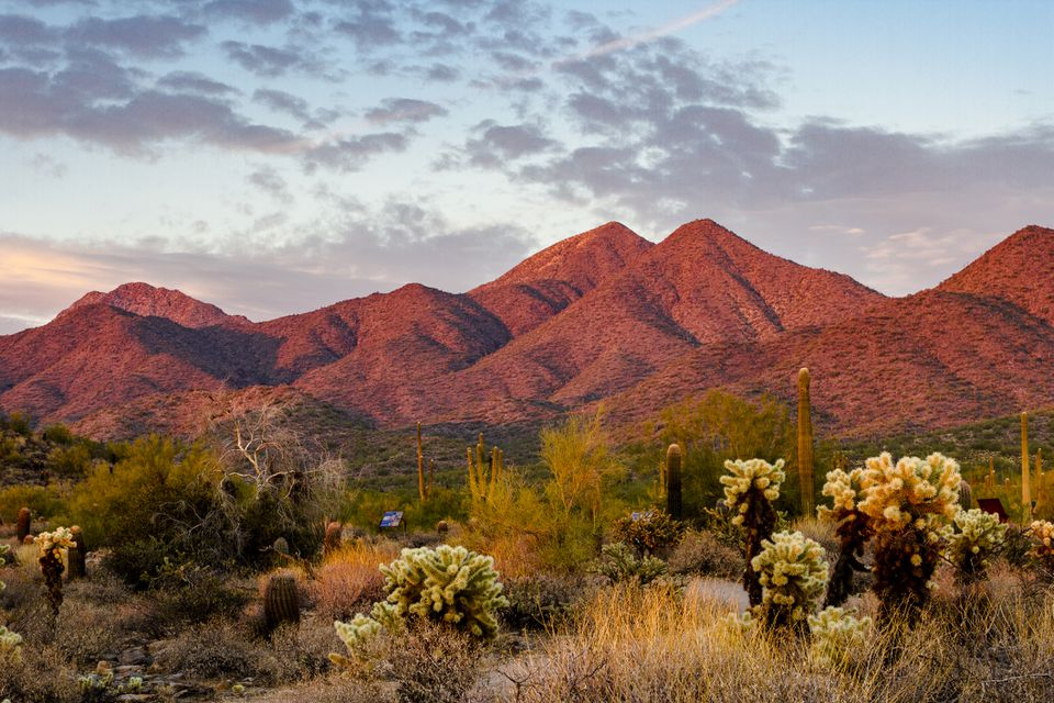 Sunset light on the mountains Scottsdale, Arizona