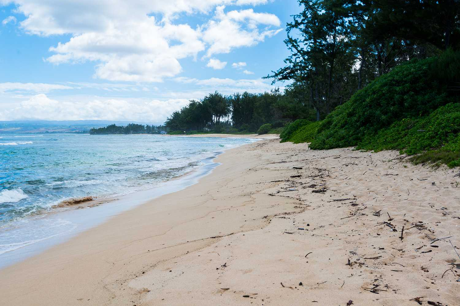 Scenic Drives and Secret Beaches on Oahu, Hawaii