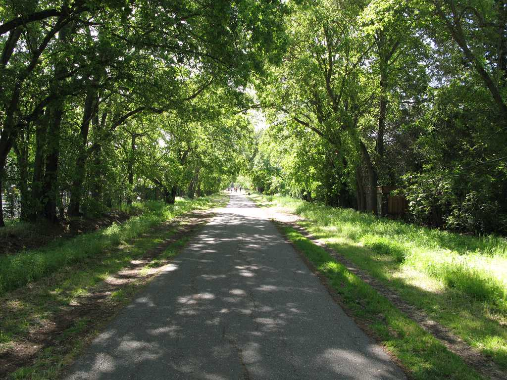 Bike riding path Iron Horse Trail in Alamo
