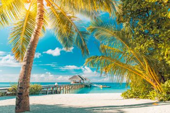 how to plan a caribbean vacation