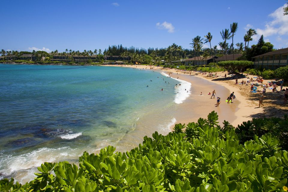 Plan Your Honeymoon in Hawaii