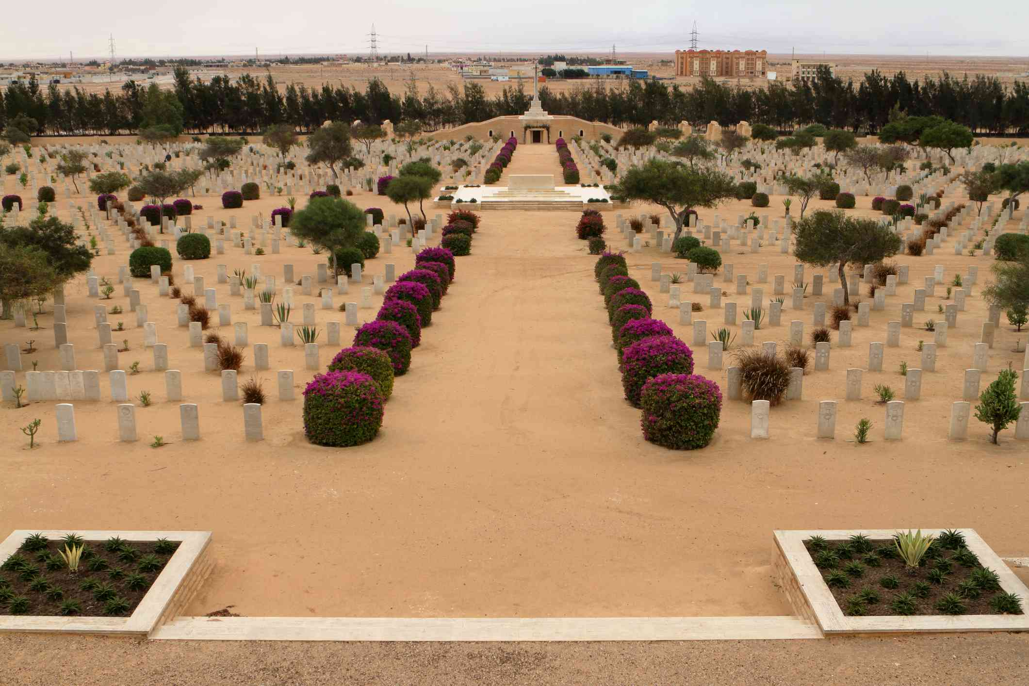 Commonwealth war cemetery at El Alamein, Egypt