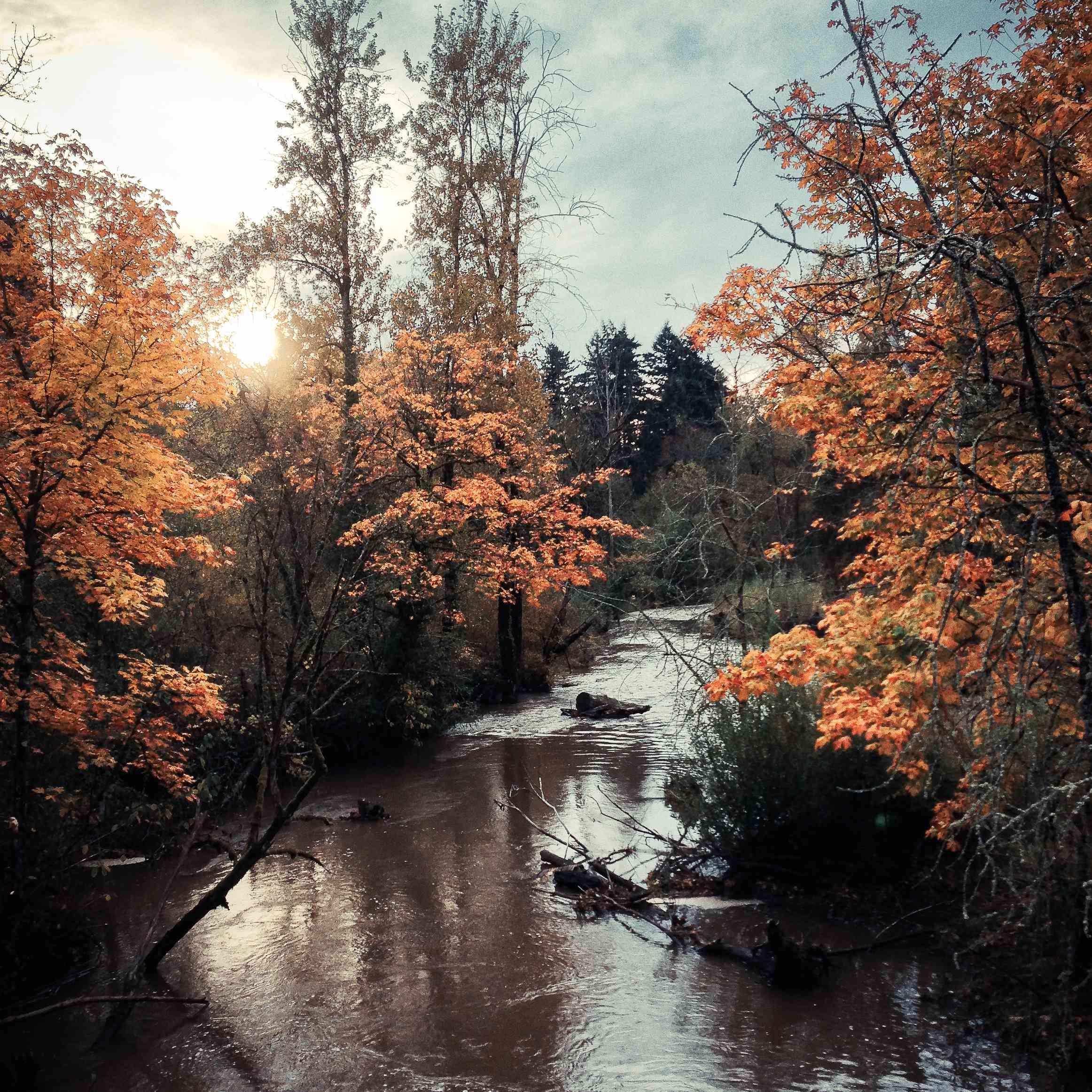 Springwater Corridor Trail, Portland Oregon en otoño
