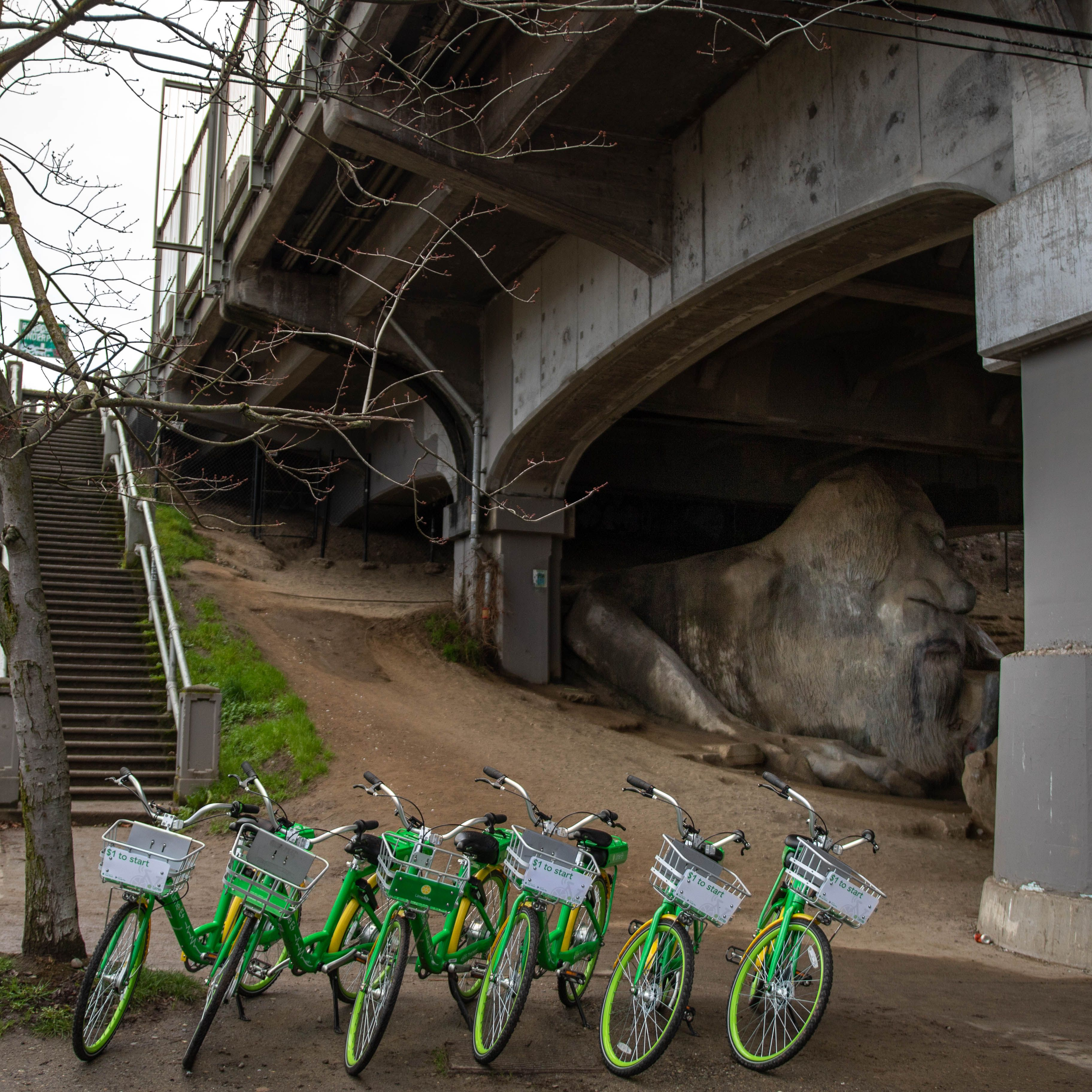 Bikes parked in front of the Troll under the bridge