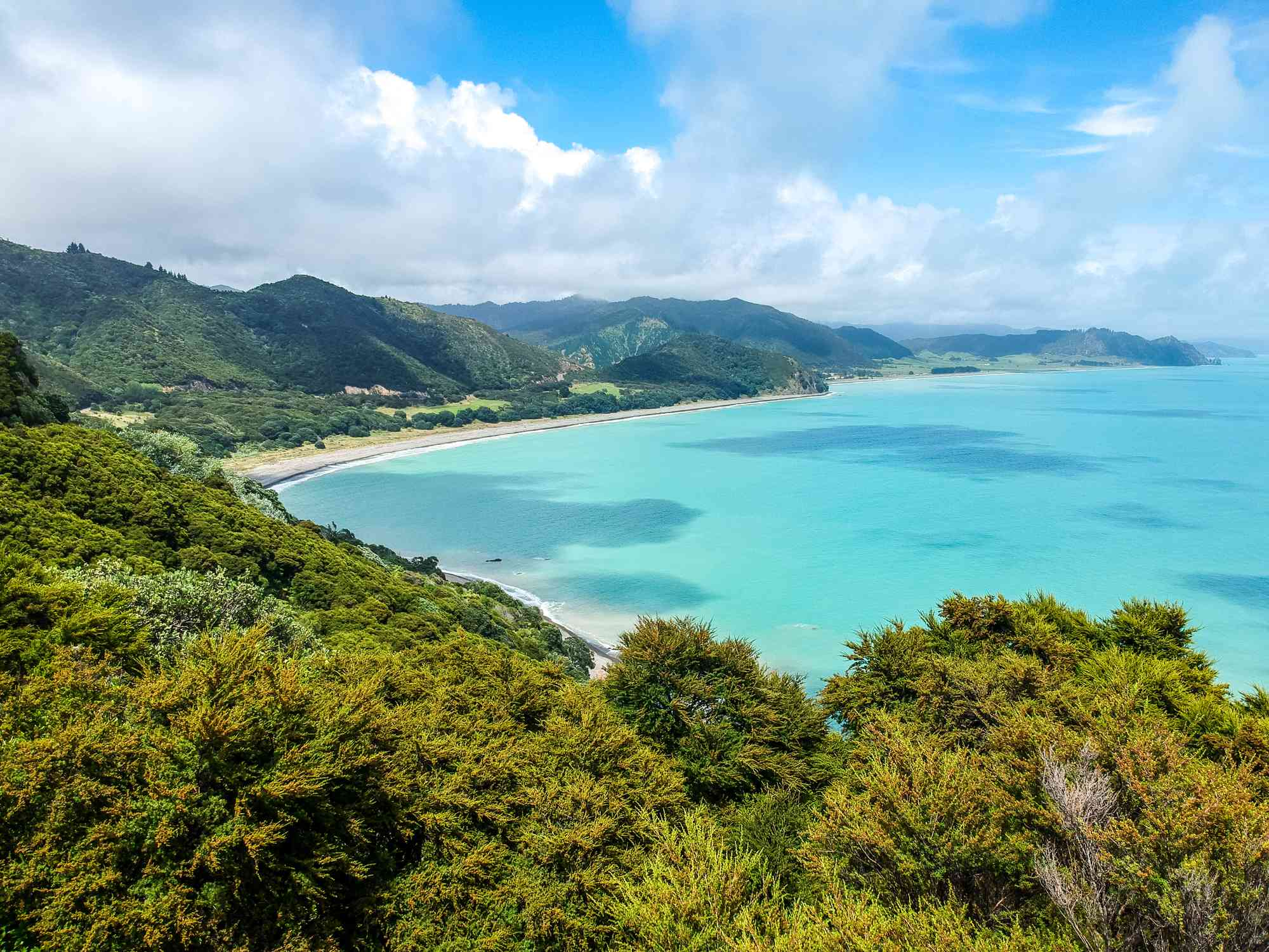 light turquoise sea with forested hills