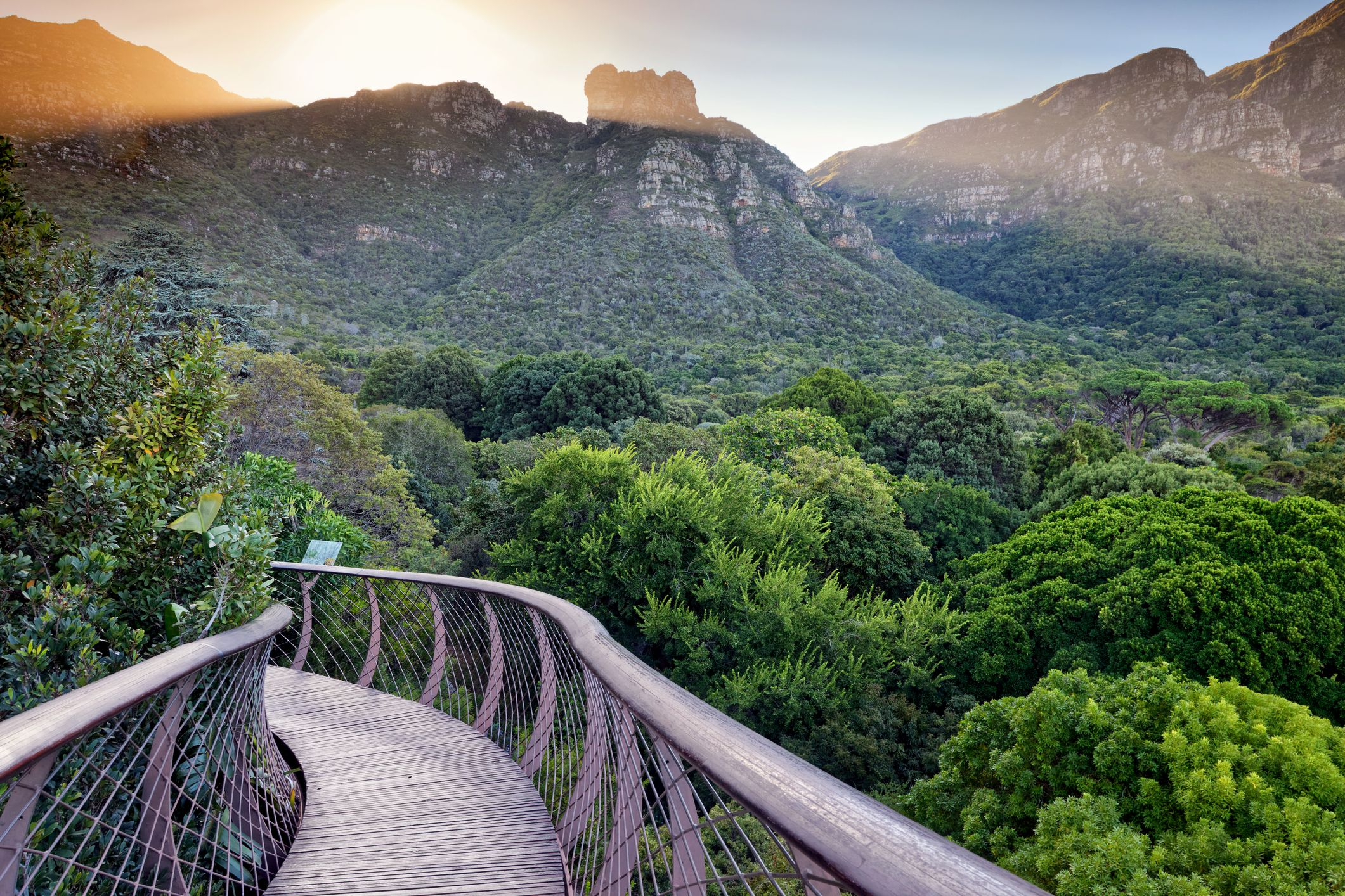 Travel Advice: Is It Safe to Travel to South Africa?