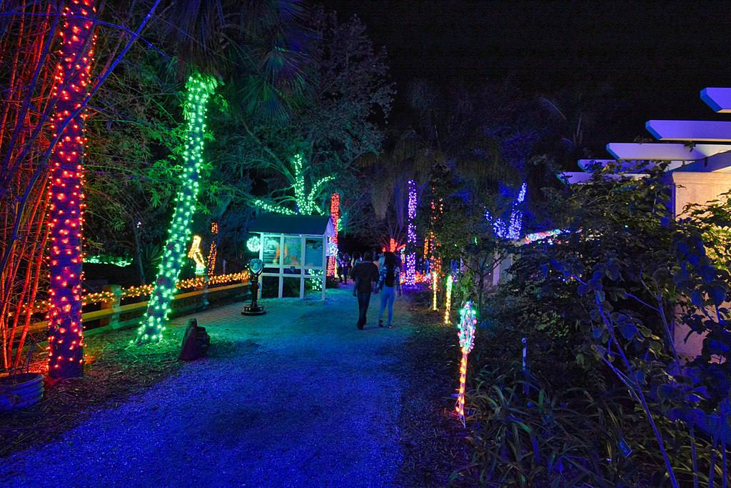 Florida Christmas.Things To Do For Christmas In Tampa Bay