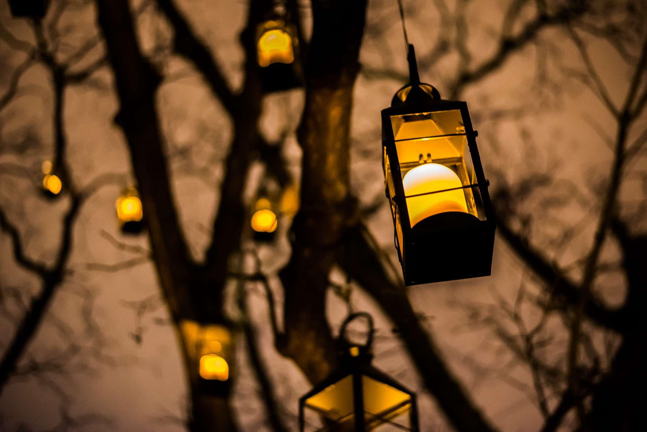 Lanterns at Missouri Botanic Garden