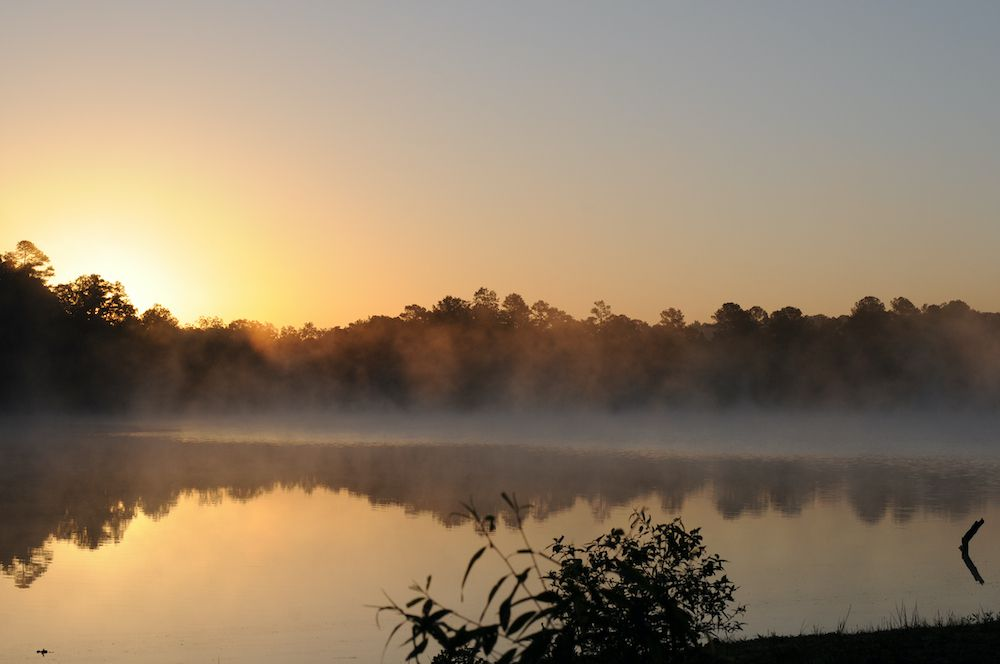 The sun rises over a misty lake in Mississippi.