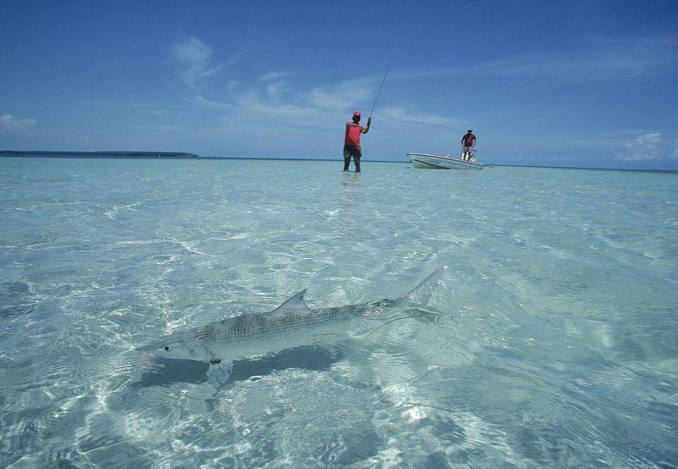 two fisherman bone fishing in florida