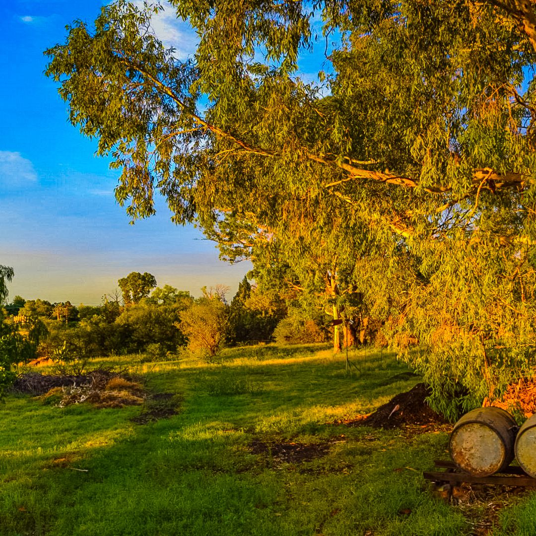 12 Best Things to Do in Bloemfontein, South Africa