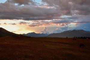 mongolia adventure travel