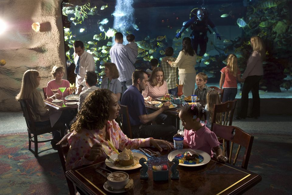 People dining at restaurant inside aquarium