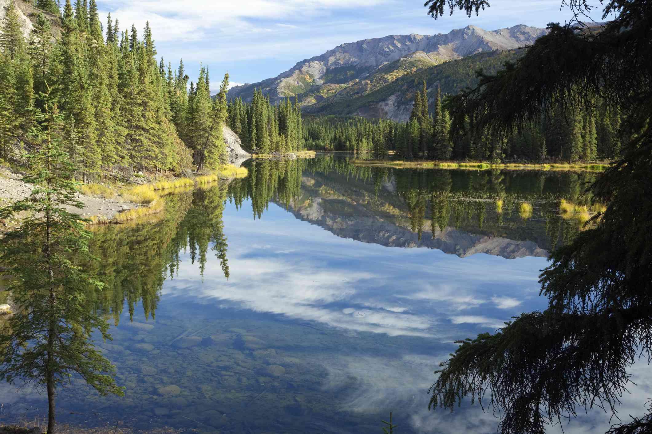 Cloud reflections in Horseshoe Lake in Alaska