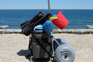 WheelEEZ Folding Beach Cart