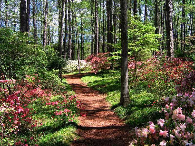 Callaway Gardens in Pine Mountain, Georgia