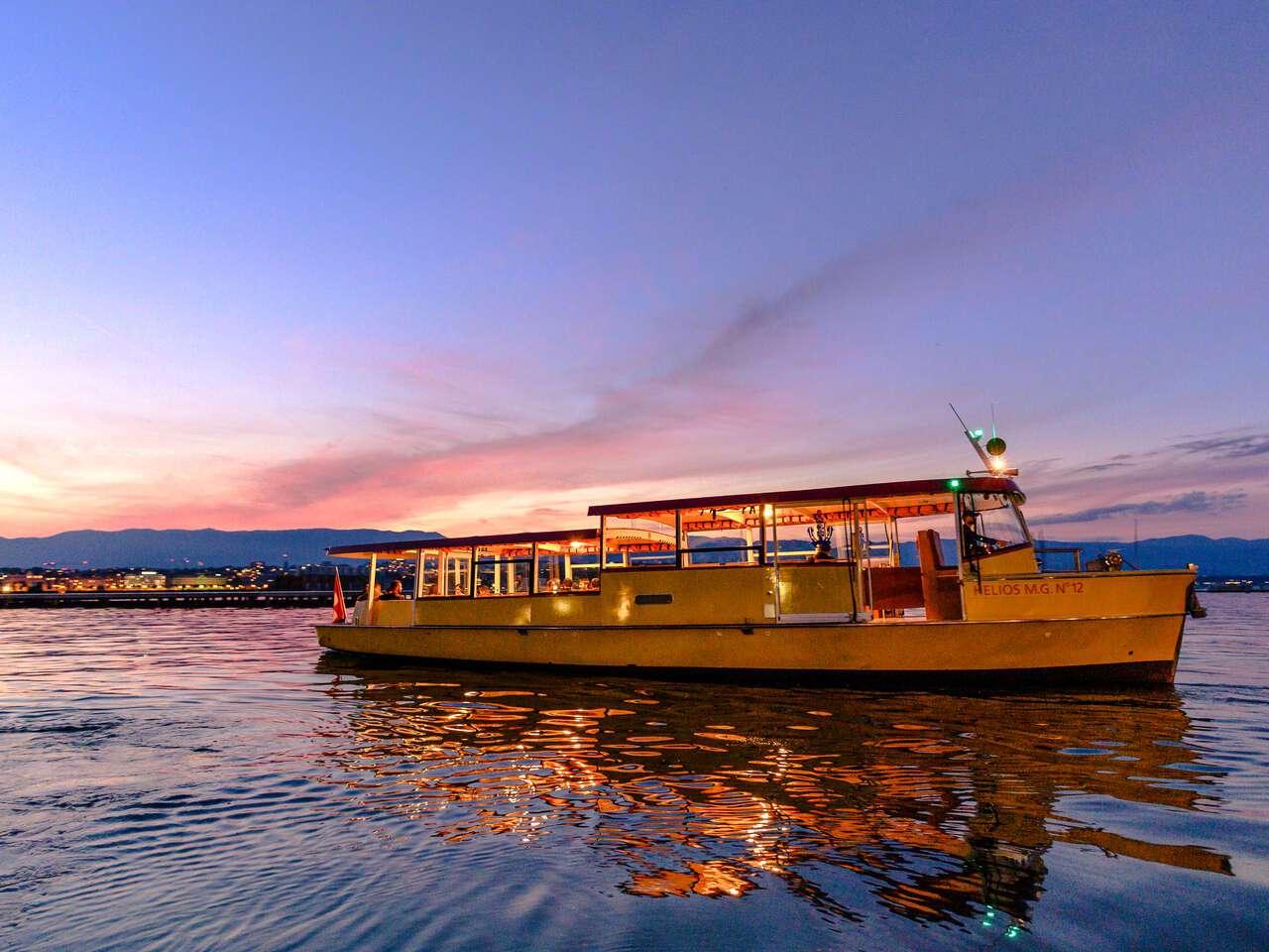 A mouette at sunset on Lake Geneva