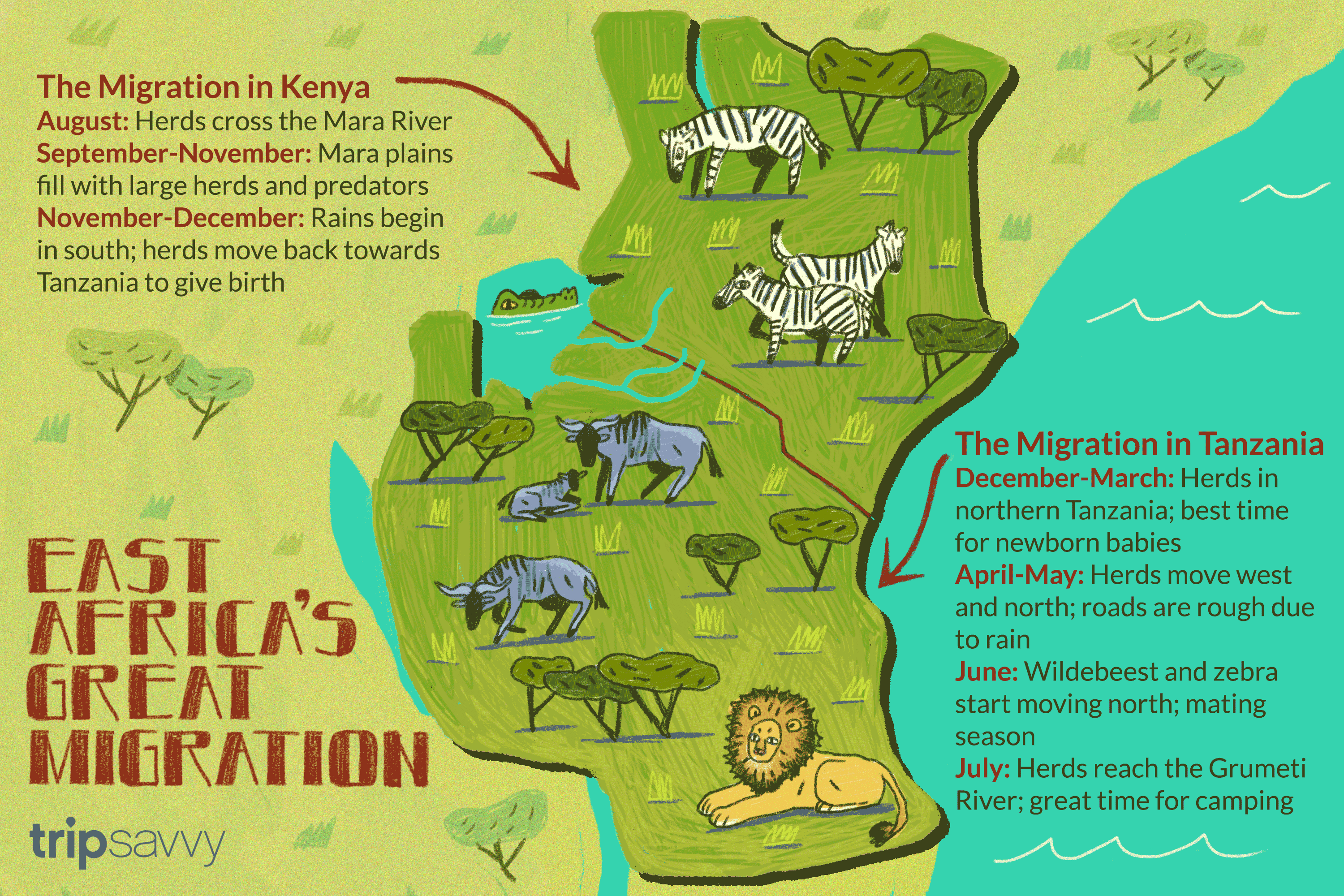 Serengeti Plains Africa Map.How To Experience East Africa S Annual Great Migration