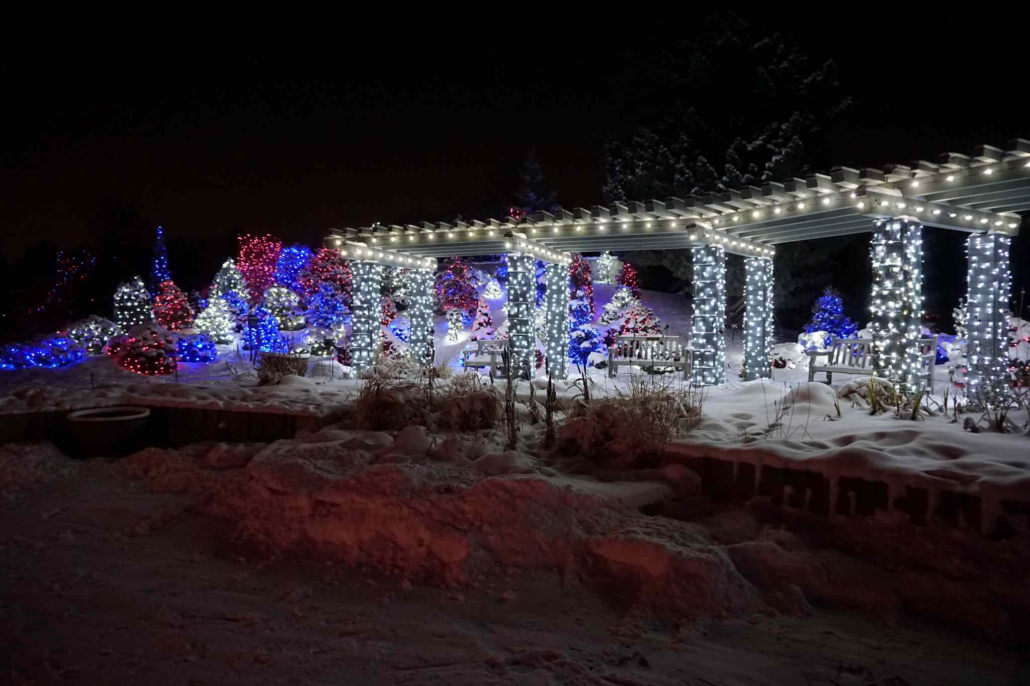 Guide To Christmas In Denver Lights