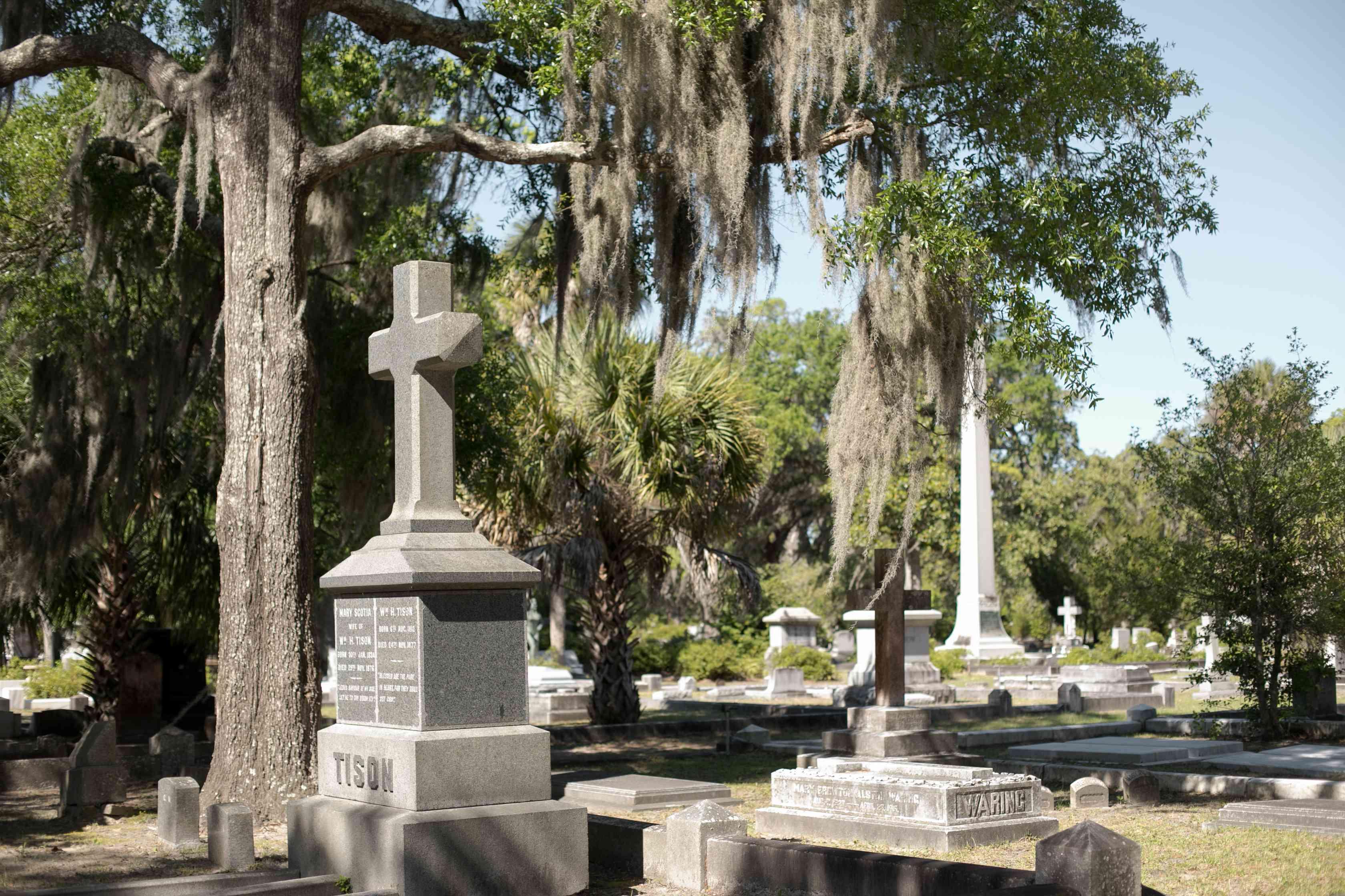 Bonaventure Cemetery, Savannah, GA