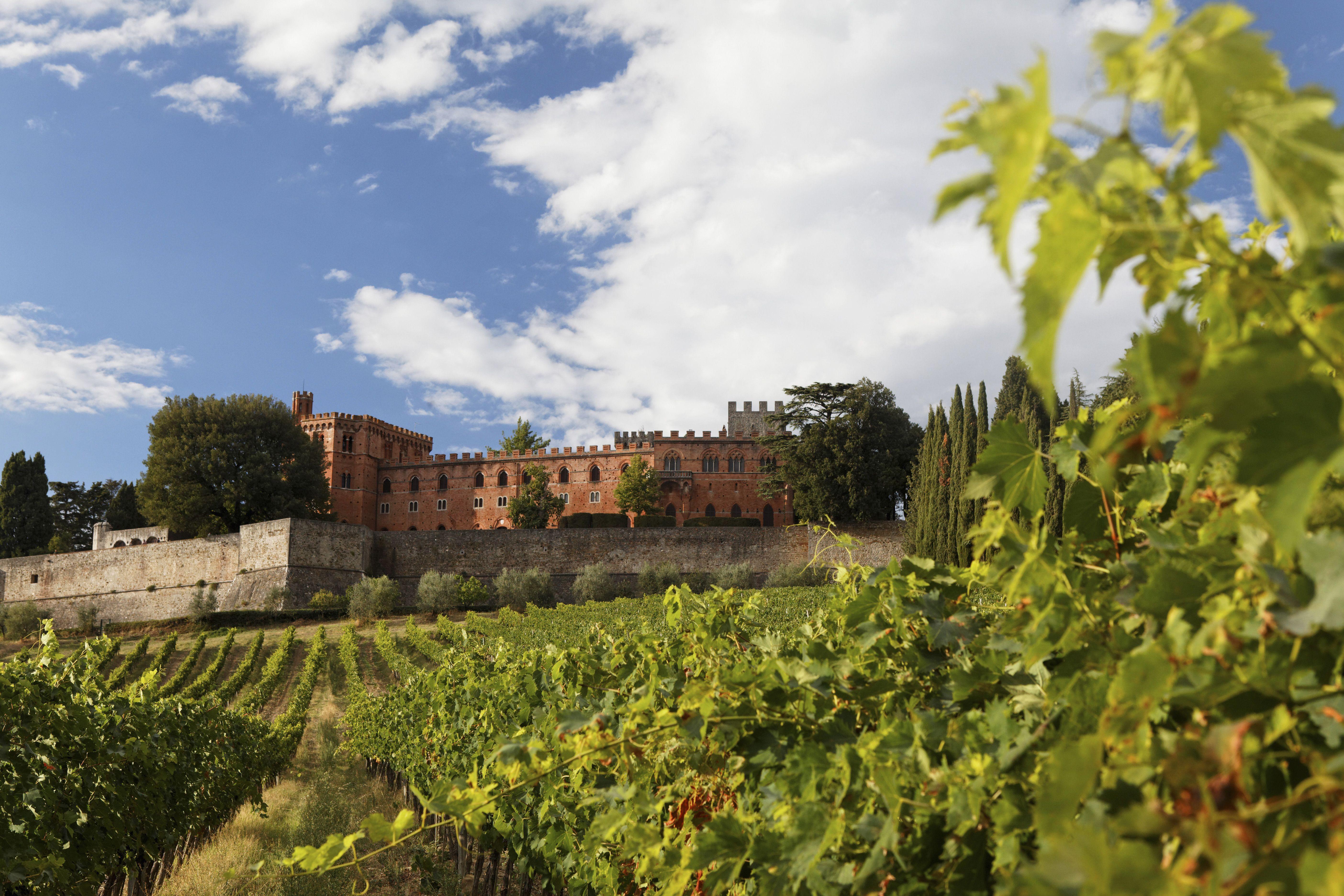 Castello di Bolio, the oldest Tuscan winery, Gaiole in Chianti, Tuscany, Italy