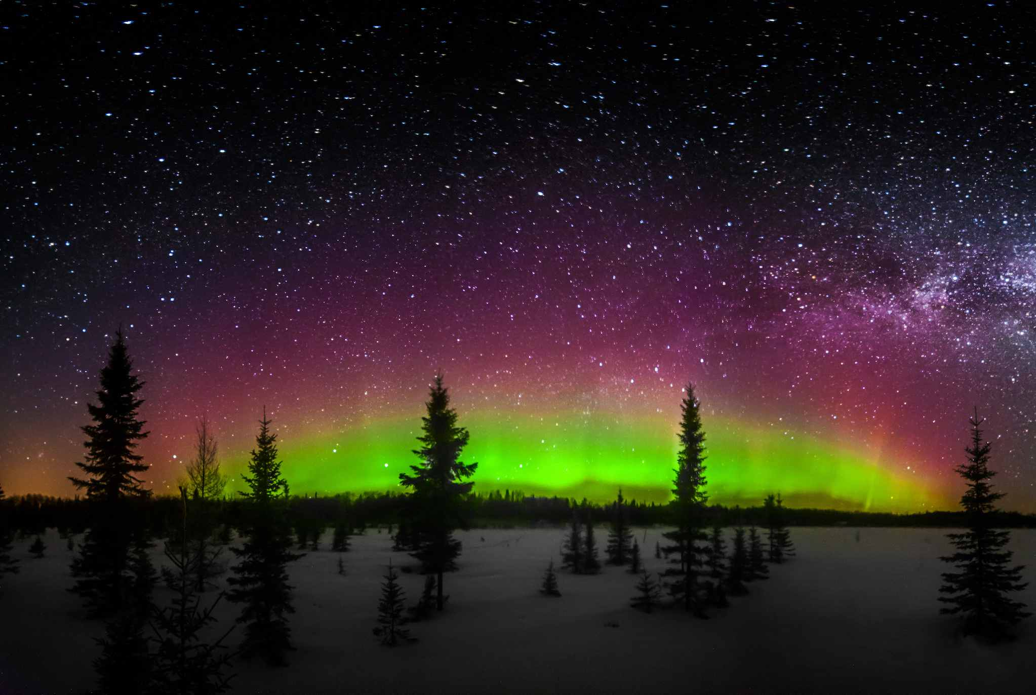 Der Winter Nachthimmel, wie in der Nähe von International Falls, Minnesota gesehen