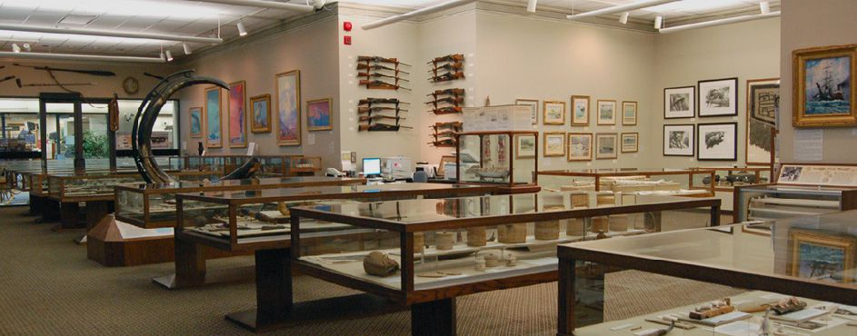 Artifacts in glass cases and paintings on walls of a museum.
