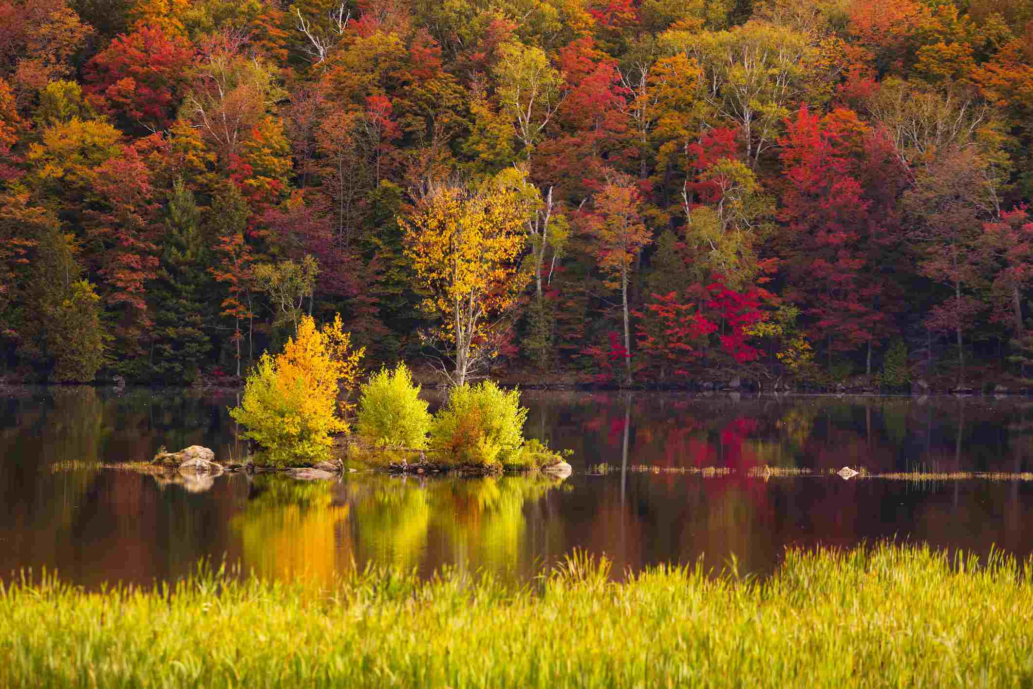 Scenery of Kent Pond lake and forest in autumn