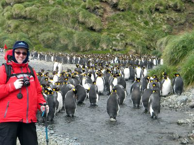 Linda Garrison with the penguins of Macquarie Island