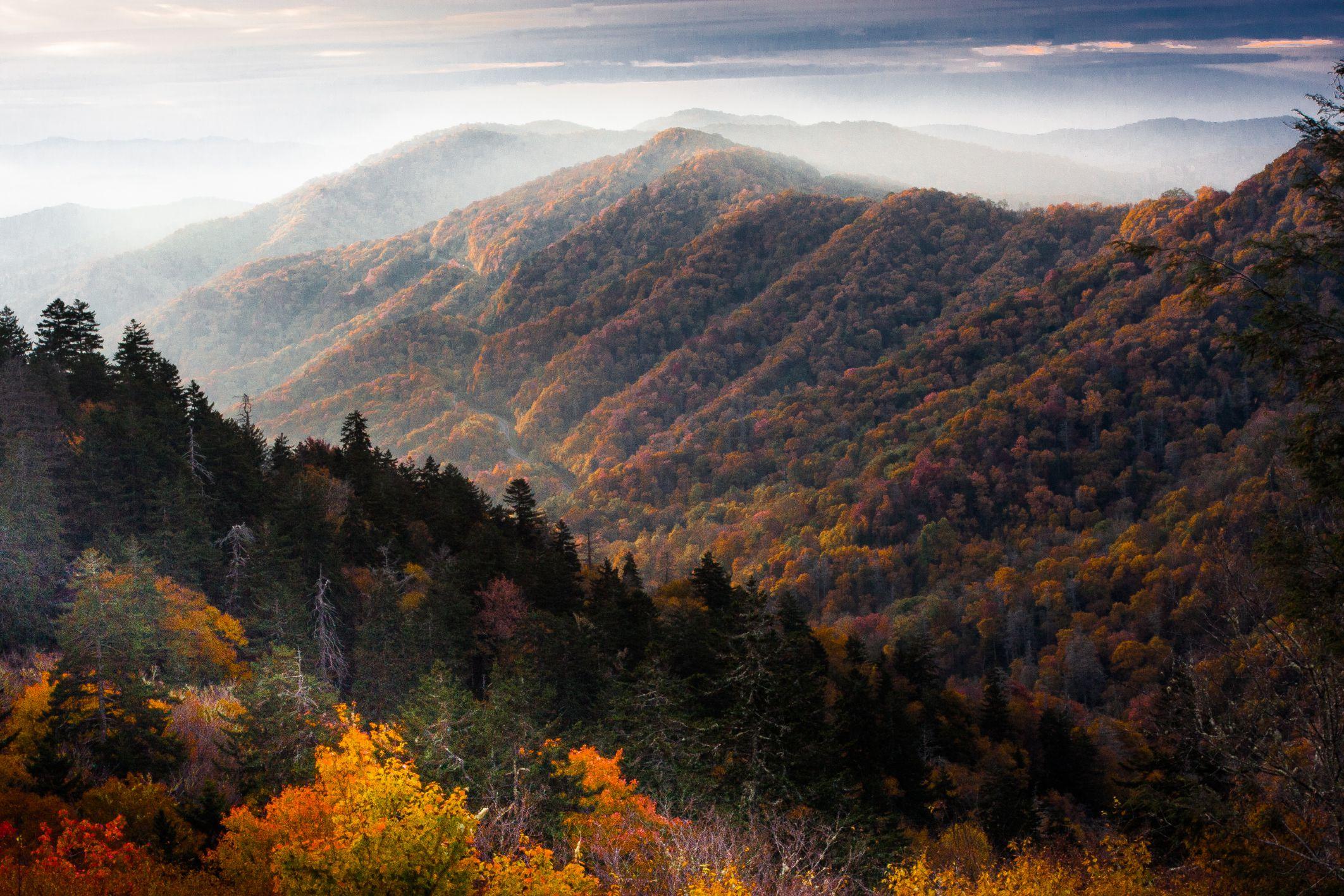 Rencana Anda Tennessee perjalanan Dengan Cuaca di Pikiran