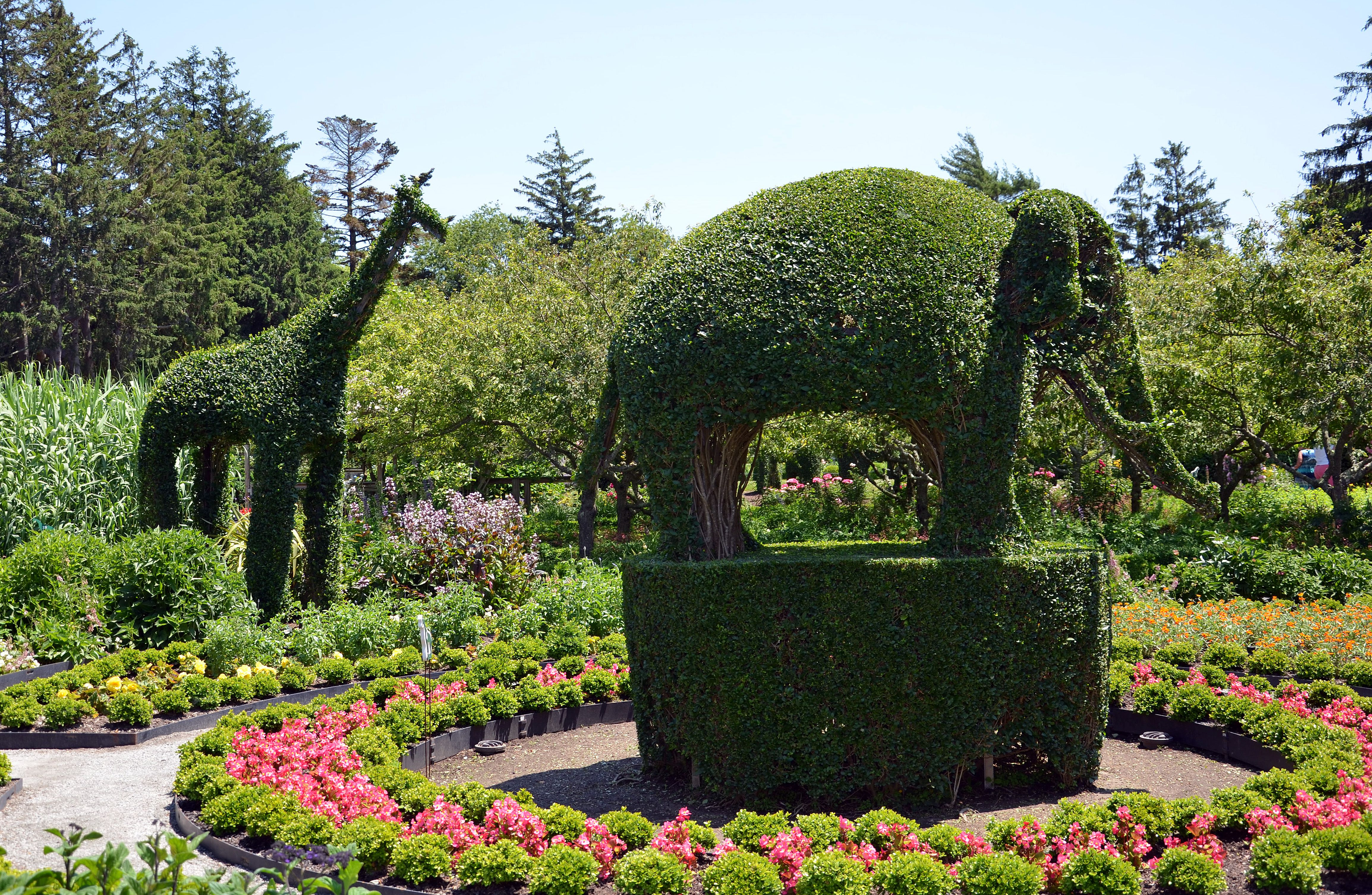 Green Animals Topiary Garden Photo Tour And Guide