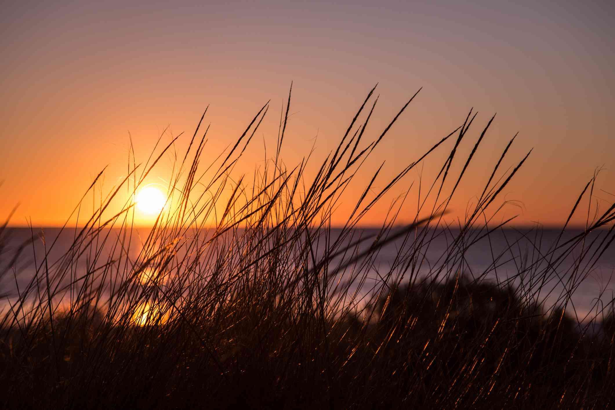 Puesta de sol en Swanbourne Beach