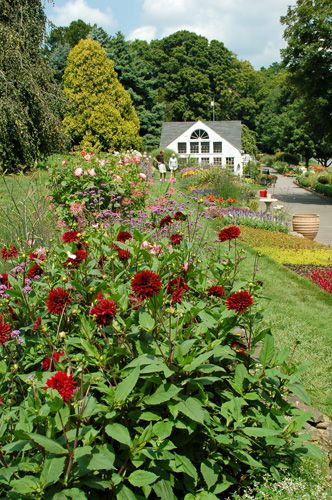 White flower farm in litchfield ct photo tour go for a stroll at white flower farm litchfield ct mightylinksfo