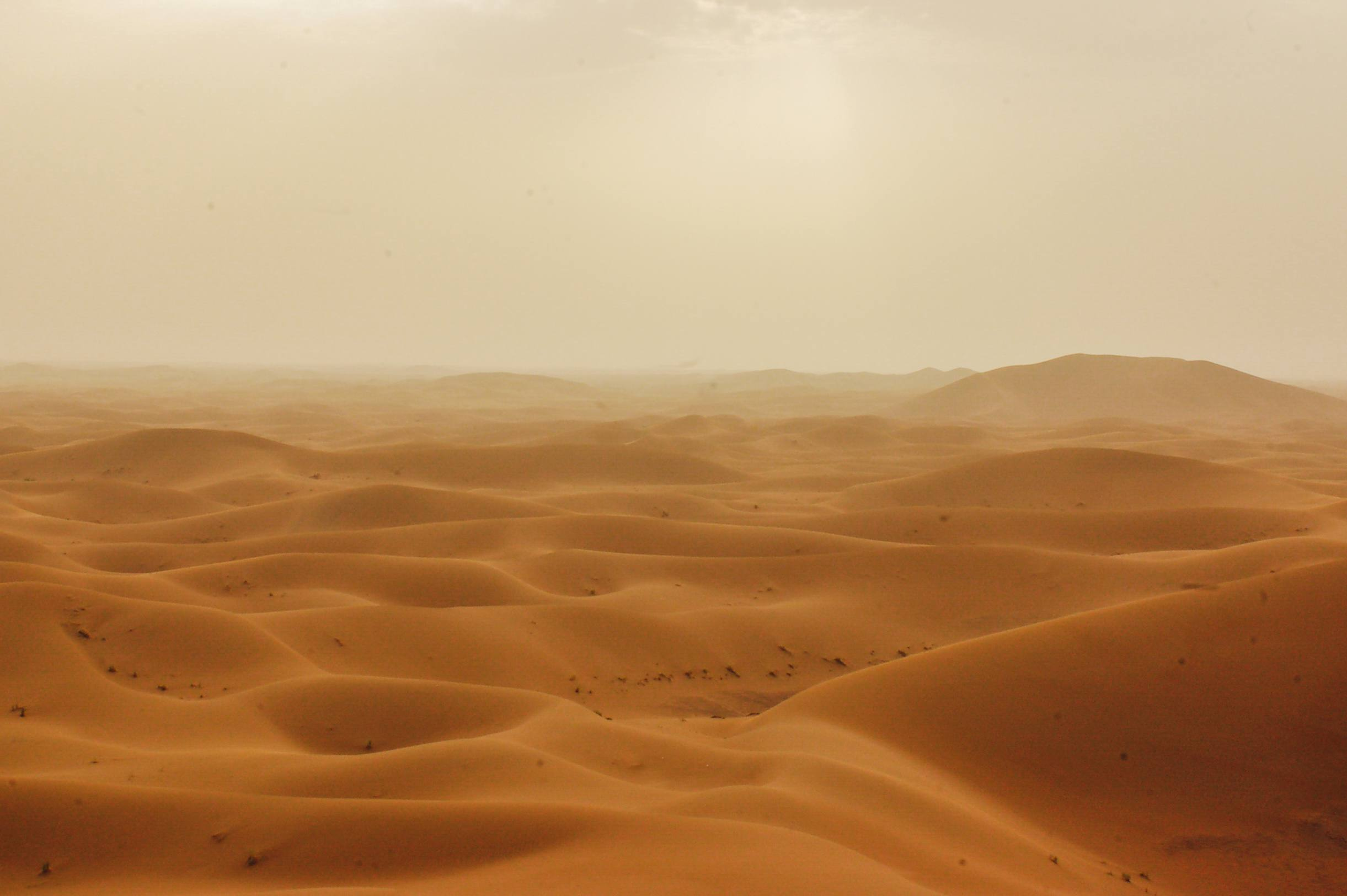 El desierto de Saharra en un día brumoso