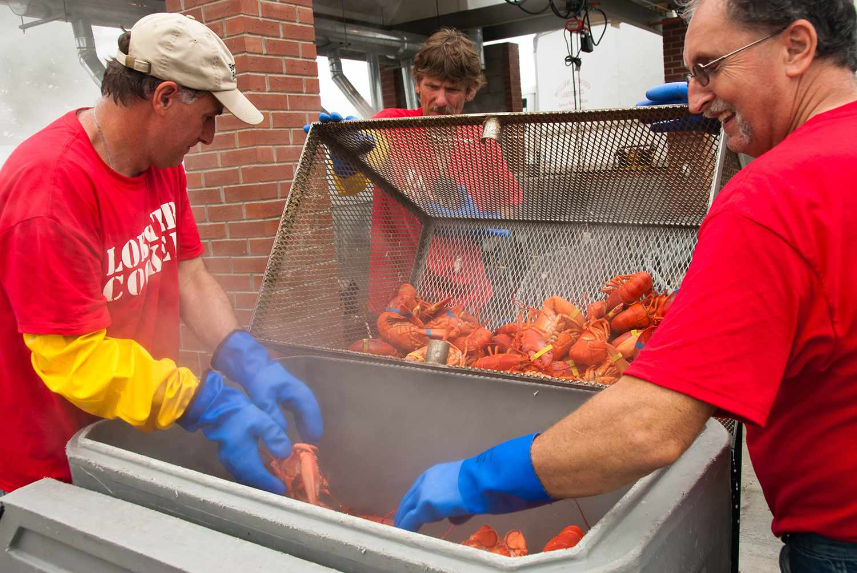 Volunteers steam lobster at Maine Festival
