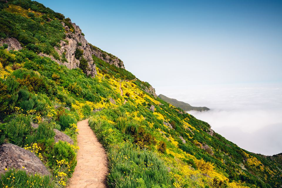 Path To Pico Ruivo On Madeira Island