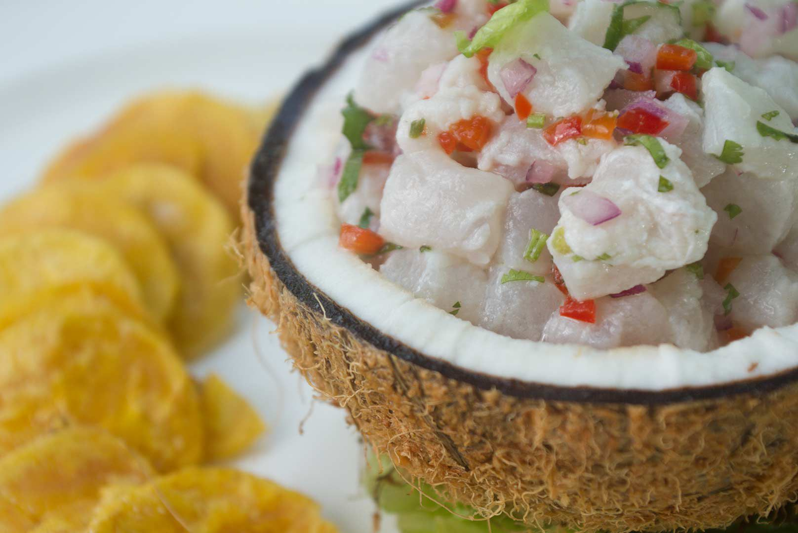 Ceviche in a coconut shell with plantain chips