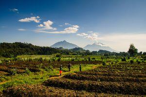 Villagers on the edge of Volcanoes National Park, Rwanda