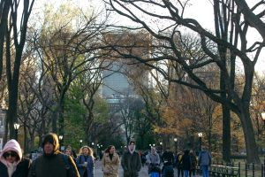 The Mall in Central Park in New York City, NY
